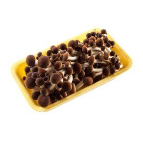 Le selezioni P&V Funghi pioppini confezione gr. 250